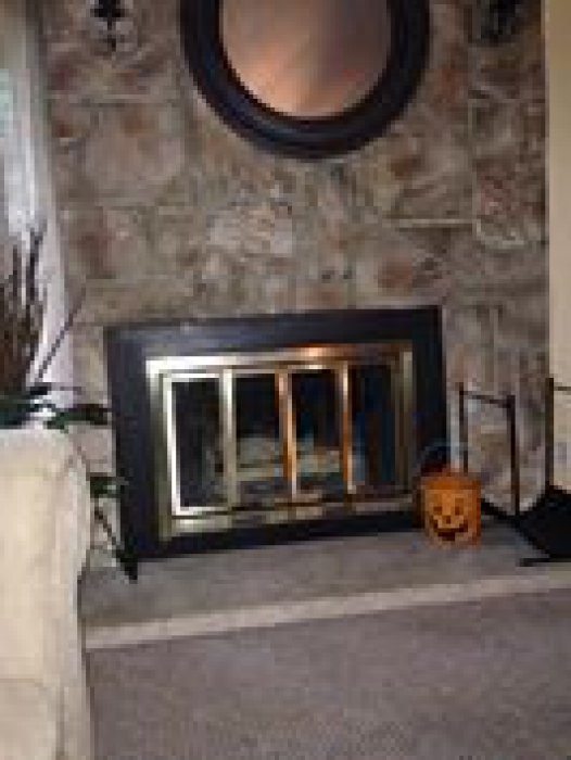 The fireplace is a majestic insert. Will I be able to install the Buck  Stove in the majestic fireplace insert and it be safe, or is it even  possible at all? - Fireplaces For Mobile Homes